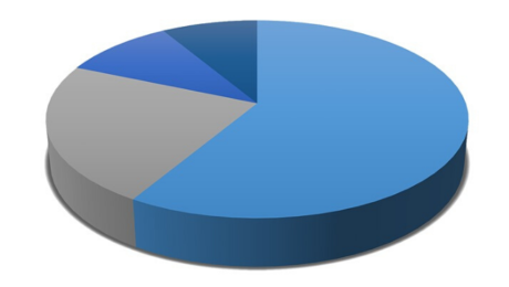 Annual survey pie chart