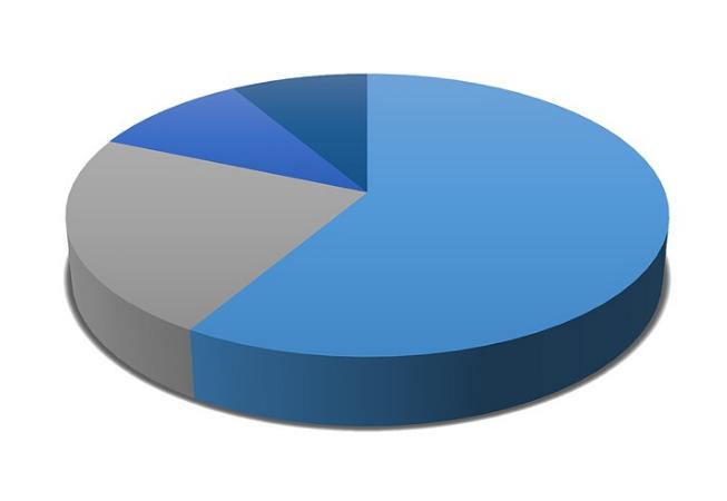 Annual survey pie chart